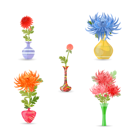 vases: collection modern vases with chrysanthemums for your design