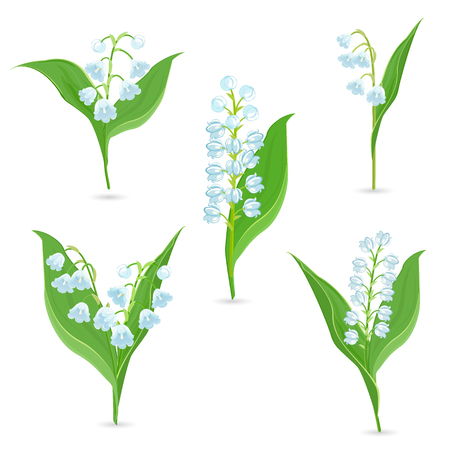 Spring collection of tiny bouquets of Lily Of The Valley for your design 矢量图像