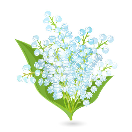 lily: lovely bouquet of small spring flowers. Lilies Of The Valley for your design