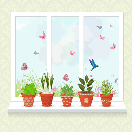 windowsill: different herbs planted in ceramic pots on a windowsill for your design Illustration