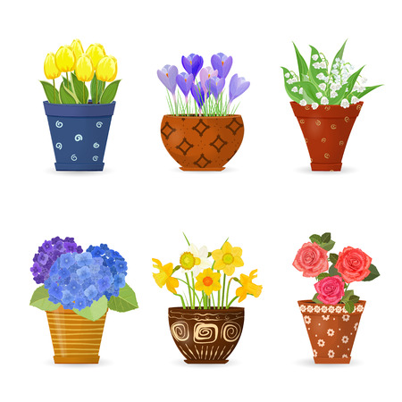 collection of cute flowers planted in art floral pots for your design Illustration