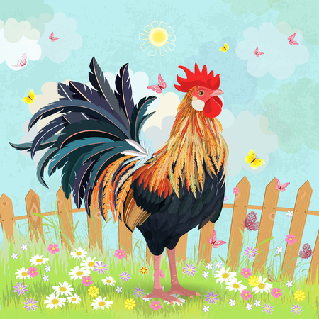 cartoon insect: lovely rooster in summer rural scenery Illustration