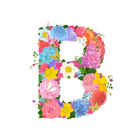 lily of the valley: Fashion alphabet from lovely flowers of daffodils, roses, tulips, lily of the valley, crocus, chrysanthemums, hortensia, lilac. Romantic letter B Illustration