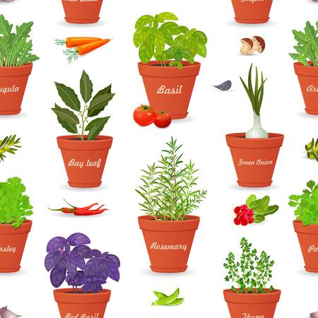 seamless texture with herbs planted in pots and fresh vegetables for your design