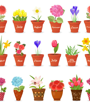 cute set seamless borders with lovely flowers planted pots for your design. daffodils, roses, tulips, lily of the valley, crocus, chrysanthemums, hortensia, lily.