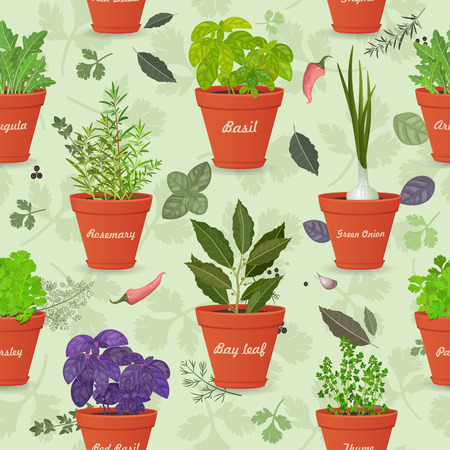 planted: vintage seamless texture with herbs planted in pots and fresh spices for your design