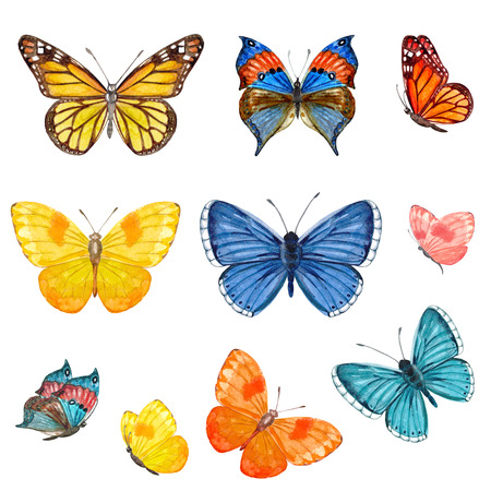 collection of butterflies. watercolor painting