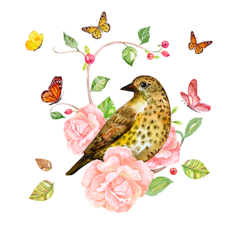 rose bush: floral fantasy with bird on rose bush with lovely flying butterflies. watercolor painting