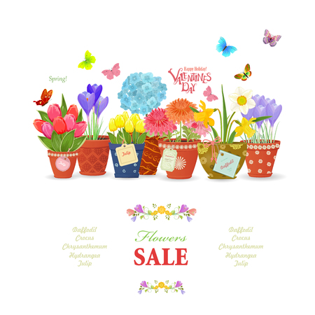 colorful collection of fine flowers planted in ceramic pots with vintage labels for your design.