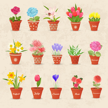 flowerpots: vintage collection of cute flowerpots with flowers for your design Illustration