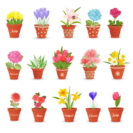 Potted plants: romantic collection of cute flowerpots with flowers for your design