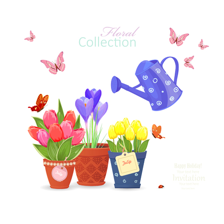 spring flowers planted in ethnic flowerpots and a vintage can watering, flying butterflies for your design Vettoriali