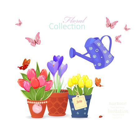 fleurs printanières plantées dans des pots de fleurs ethniques et un arrosoir vintage, papillons volants