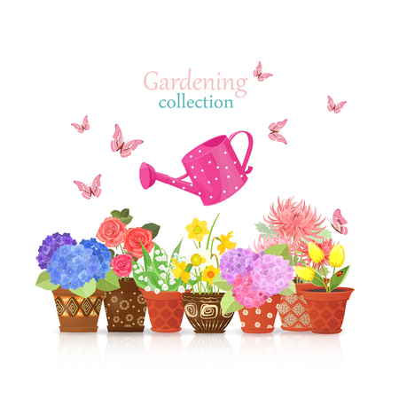 planted: lovely flowers planted in ethnic flowerpots with a colorful can watering and flying butterflies for your design