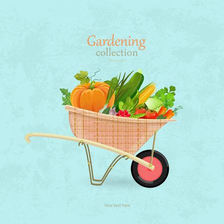 vintage garden wheelbarrow with vegetables for your design