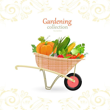 vegetable gardening: vintage garden cart with vegetables for your design