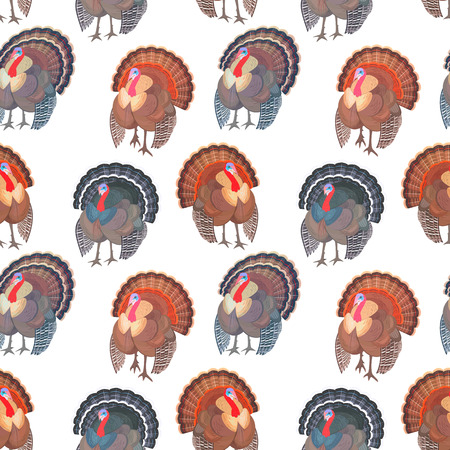 Seamless texture with set wild turkeys for your design