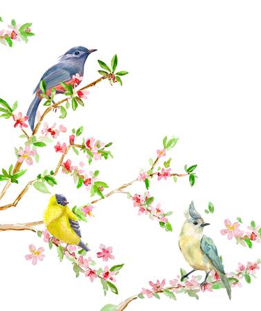 かわいい鳥の開花小枝の上で招待状。水彩画