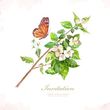 vintage greeting card with flowering branch of apple and a butterfly. watercolor painting