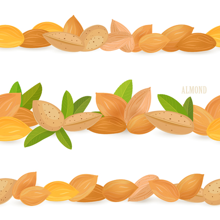 A collection of seamless borders with almonds on white background.