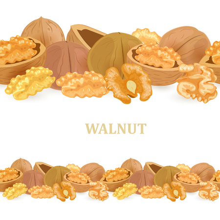 collection of seamless borders with walnuts for your design