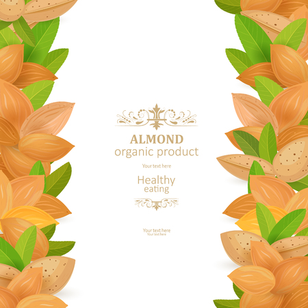 banner with vertical borders of tasty almonds on white background for your design Imagens