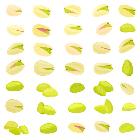 collection of pistachios for your design