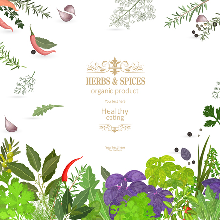 graceful banner with colorful herbs and spices for your design