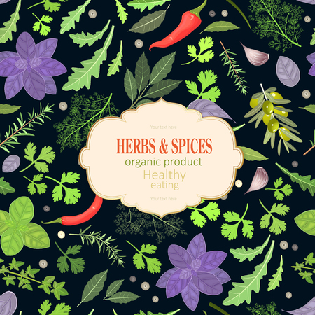 vintage card with fresh herbs and spices for your design Illustration