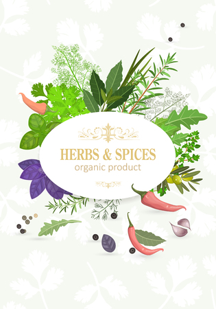 organic card with fresh herbs and spices for your design Illustration