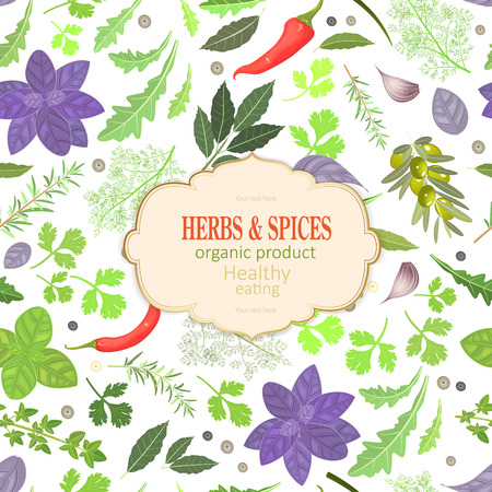 Colorful card with fresh herbs and spices for your design