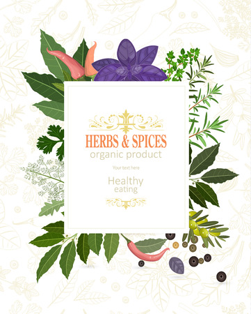 Banner with fresh herbs and spices template.