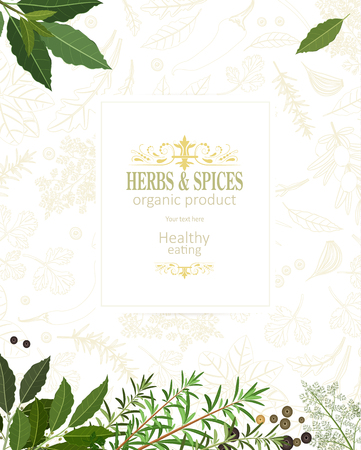 Organic banner with fresh herbs and spices template. Ilustração