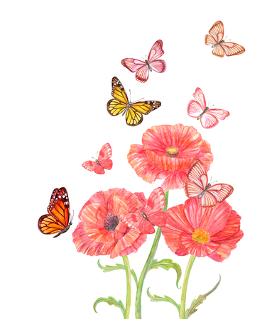 three red poppies with flying butterflies for your design. watercolor painting