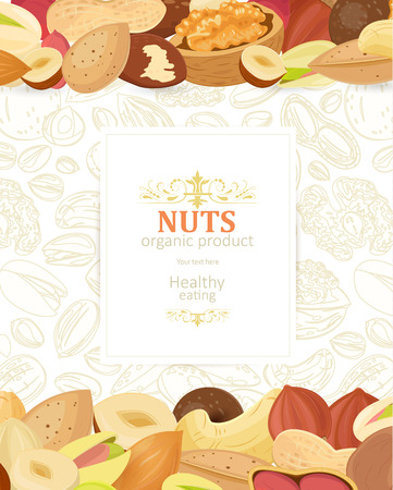 Different of nuts image illustration  イラスト・ベクター素材