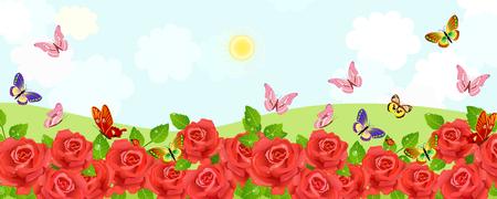 Ländliche Felder mit blühenden roten Rosen und fliegenden Schmetterlingen.