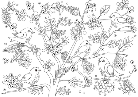 Cute birds on tree of rowan with bunches of berries for your coloring page
