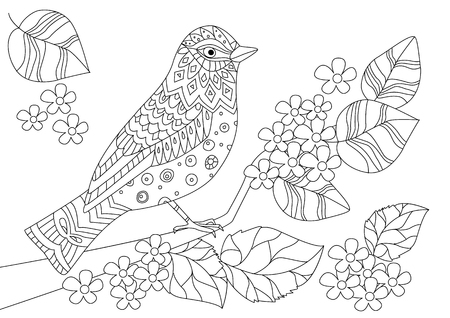 Cute bird on blossom branch for your coloring book