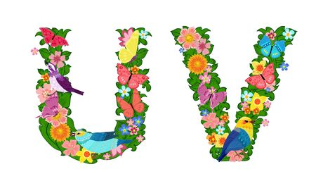 fancy collection of colorful letters U, V with butterflies and birds for your design