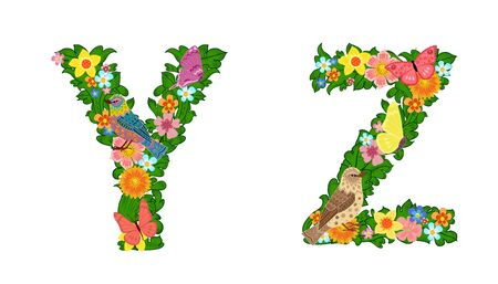 fancy collection of colorful letters Y, Z with butterflies and birds for your design
