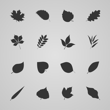 with sets of elements: Set of leaves