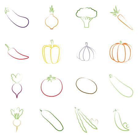 rutabaga: Set of outlines of vegetables illustration Illustration