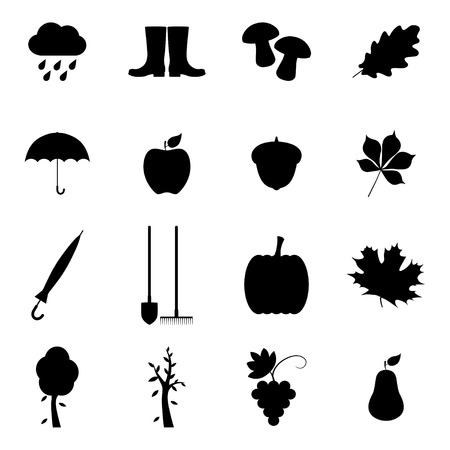 grapes and mushrooms: Set of autumn icons, vector illustration Illustration