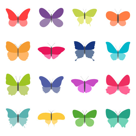 Set of color butterflies on white background, vector illustration Illustration