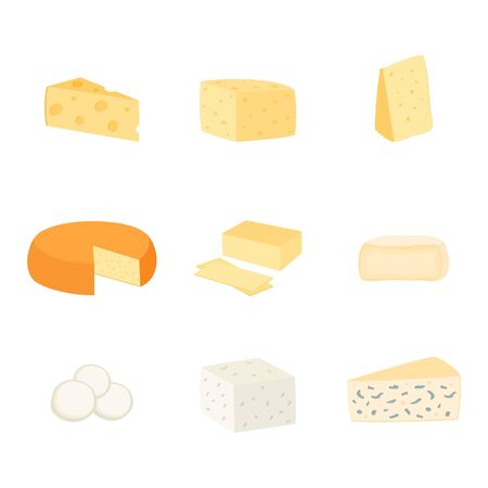 Set of different kinds of cheese, vector illustration