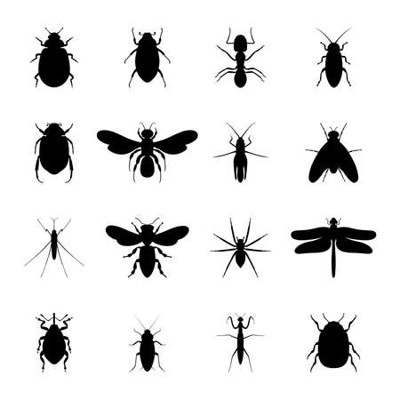 Set of black silhouettes of insects, vector illustration Ilustración de vector