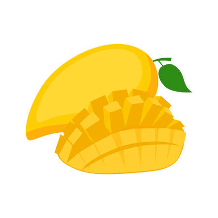 Mango, whole fruit and half, on white background, vector illustration
