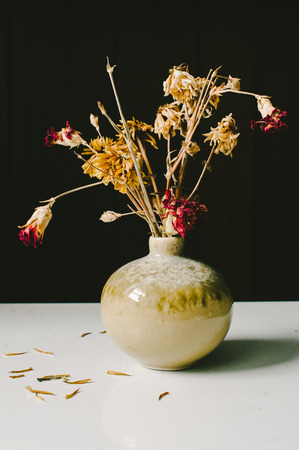 Red  Yellow Dried Flowers in Sage Green Vase Stock Photo