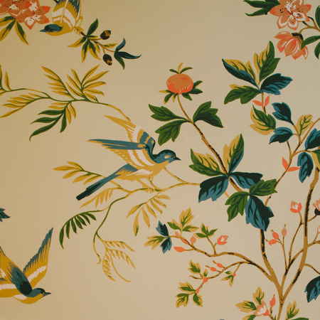 Vintage Bird  Flower Wallpaper