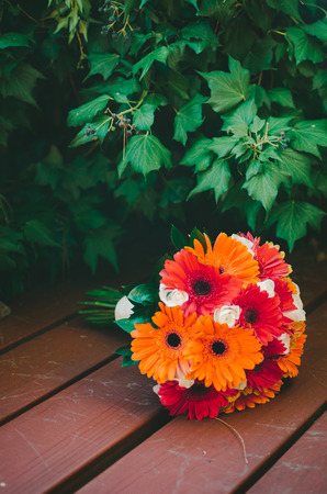 Orange  Red Daisy Bouquet Stock Photo